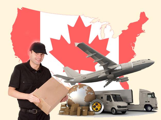 Có nhiều loại hàng hoá được phép gửi qua Canada như máy móc, thực phẩm...